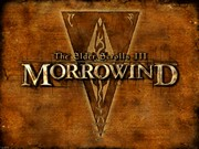 THE ELDER SCROLLS III MORROWIND screen