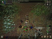DUNGEON SIEGE 16