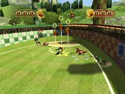 HARRY POTTER: QUIDDITCH WORLD CUP 13