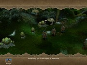 LORD OF THE RINGS: WAR OF THE RING 13